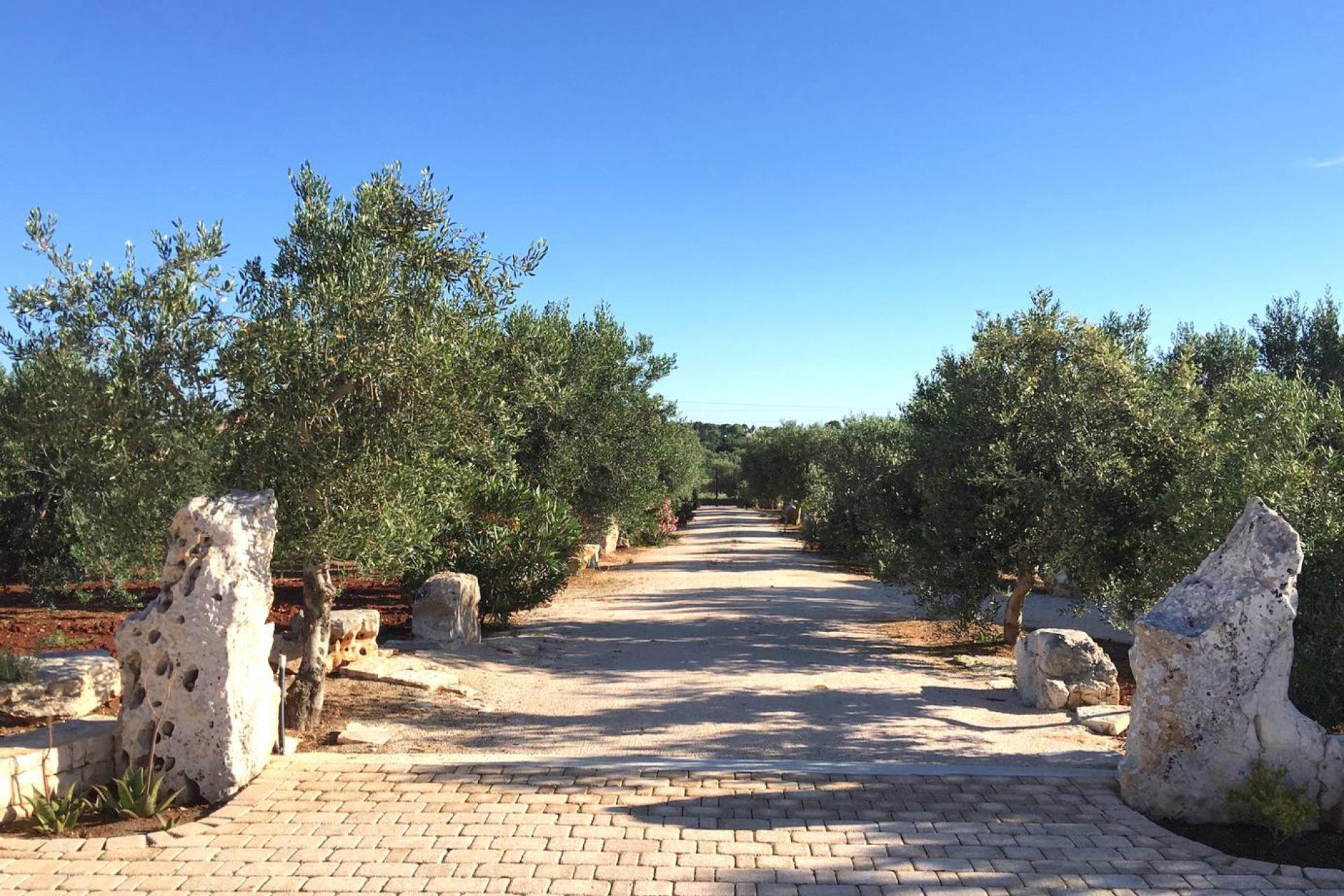 Agriturismo Piemonte Agriturismo di charme Piemonte, per gli amanti del vino e buon cibo