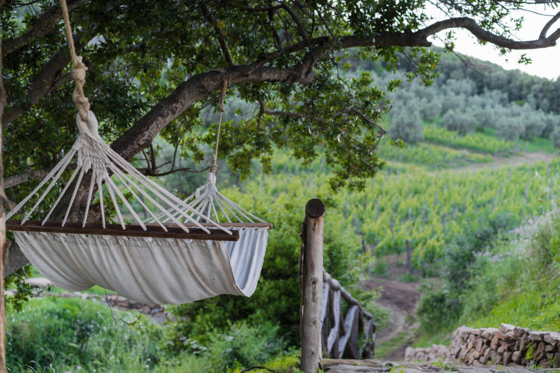 Agriturismo Toscana Agriturismo di lusso vicino al mare in Toscana