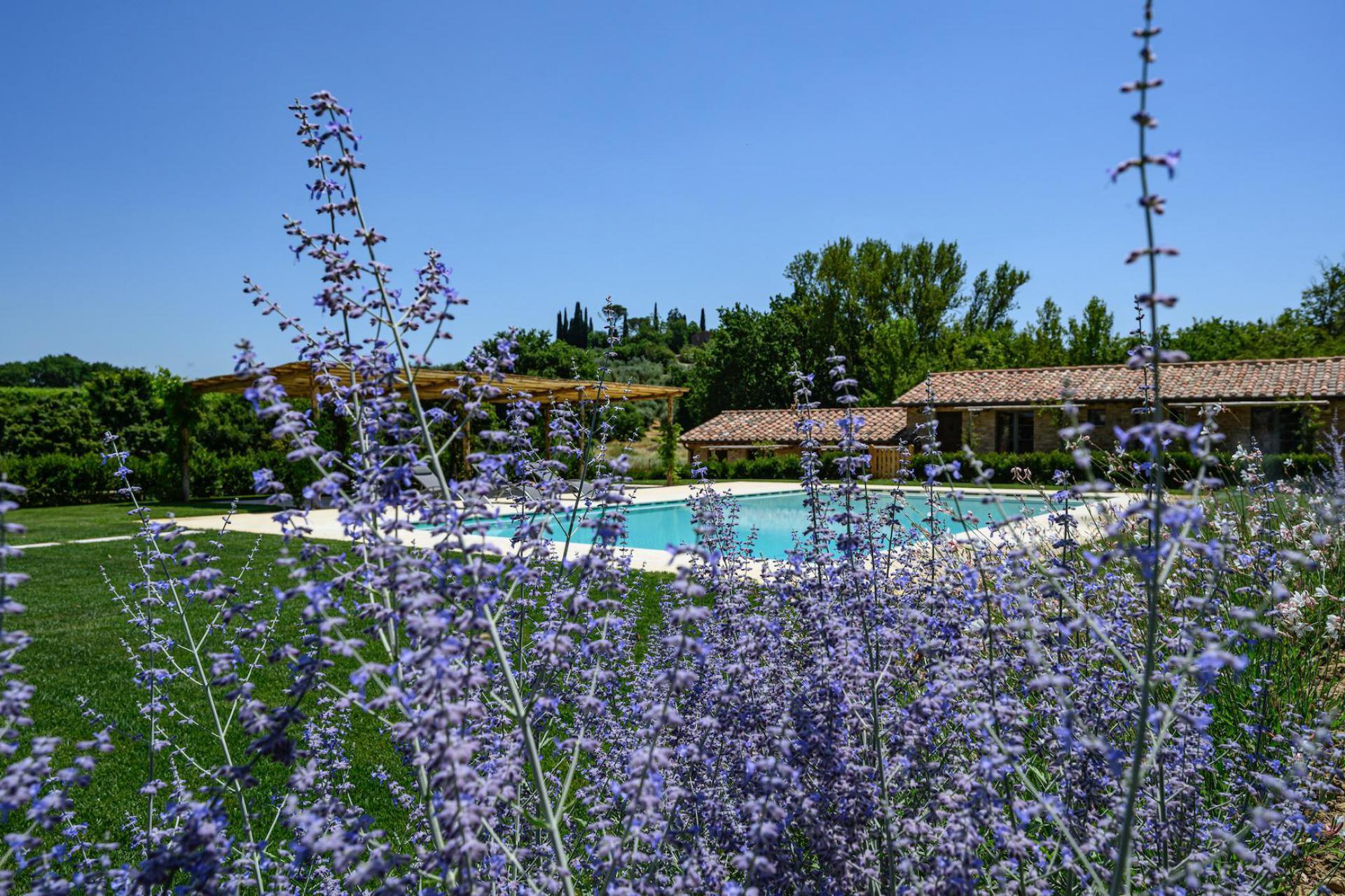 Agriturismo Toscana Agriturismo in Toscana  ideale per rilassarsi