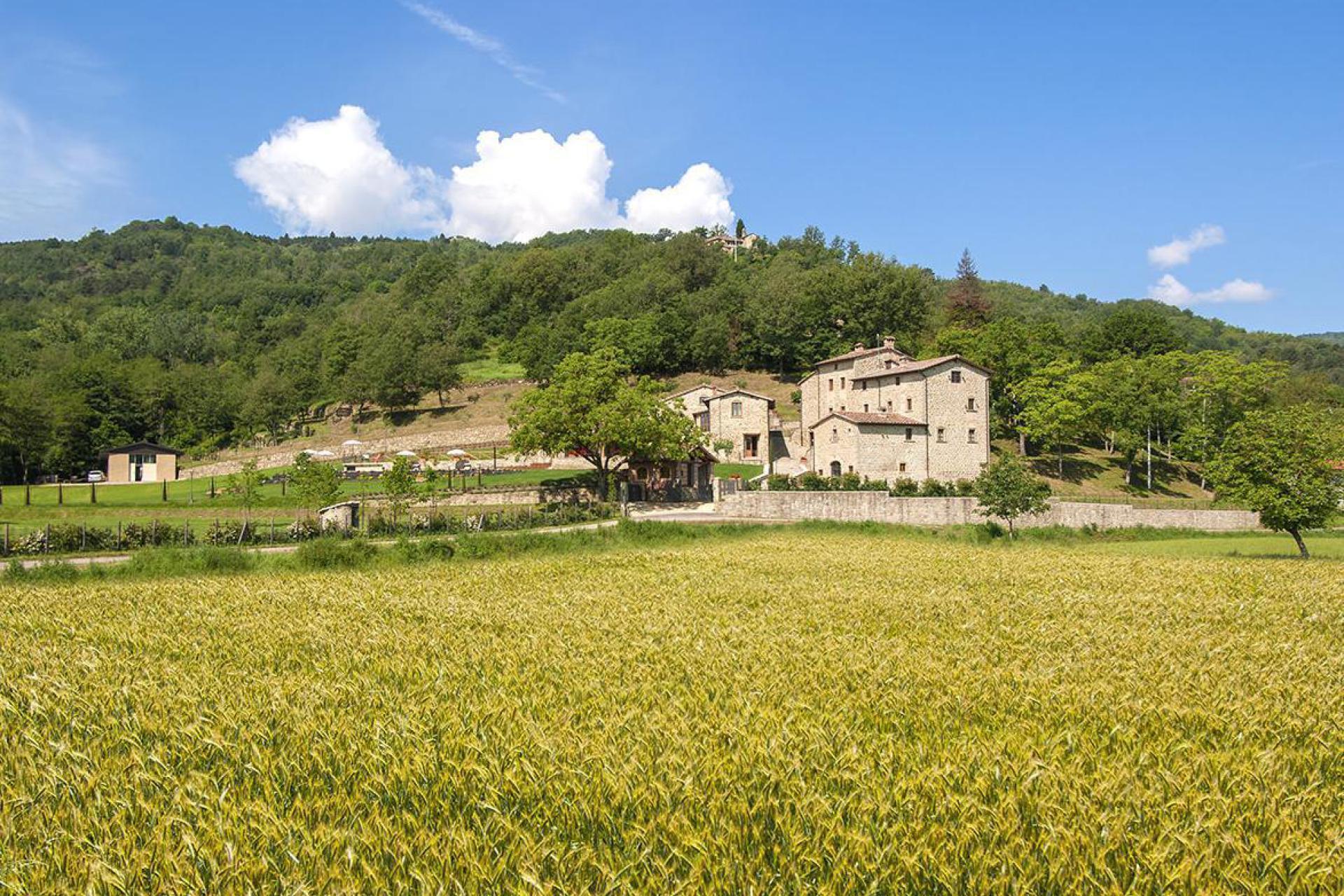 Agriturismo Toscana Agriturismo in zona tranquilla in Toscana, bella vista