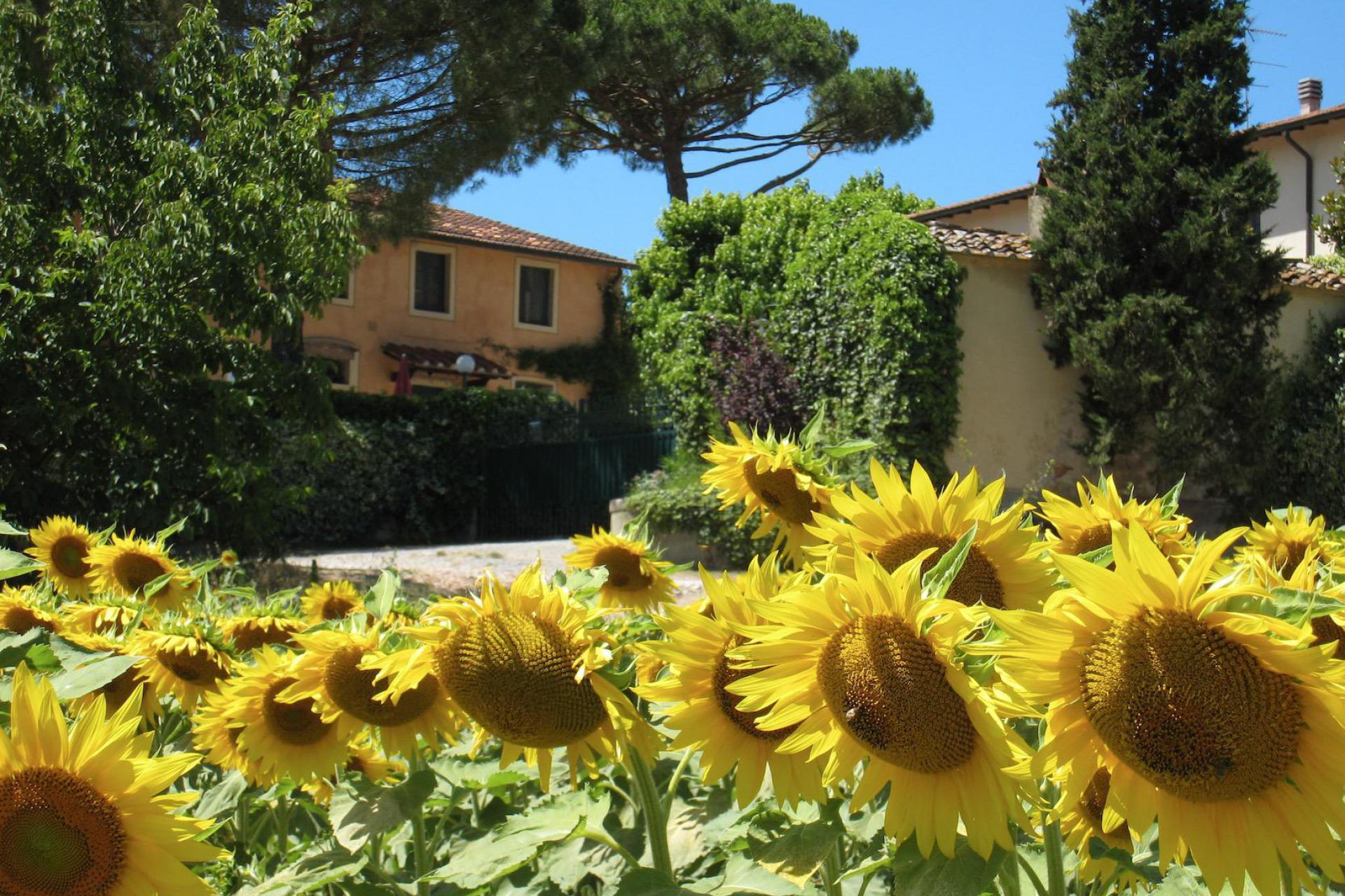 Agriturismo Toscana Agriturismo per famiglie con grande piscina e piscina per bambini