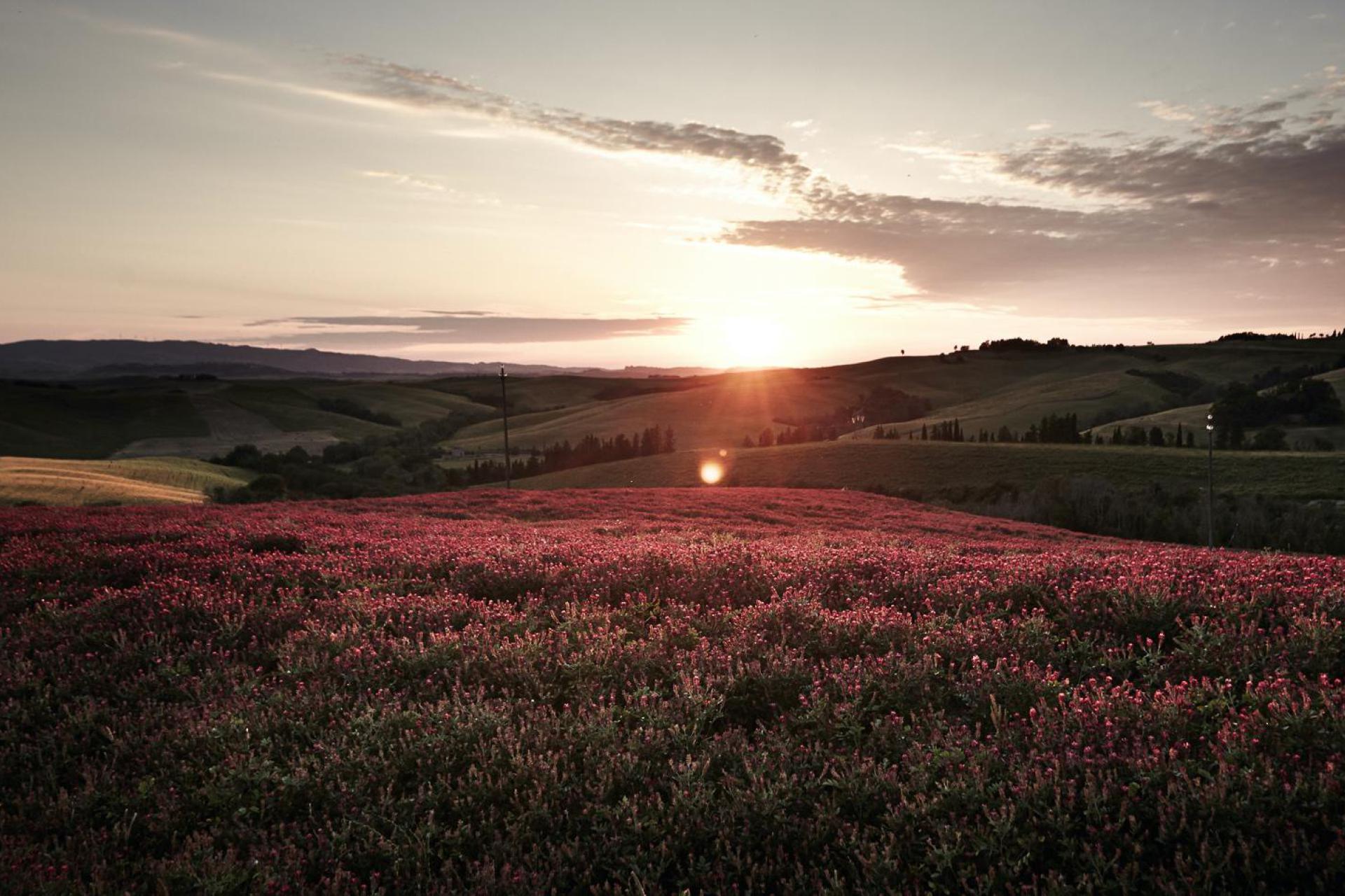 Agriturismo Toscana agriturismo per famiglie situato in posizione centrale in Toscana