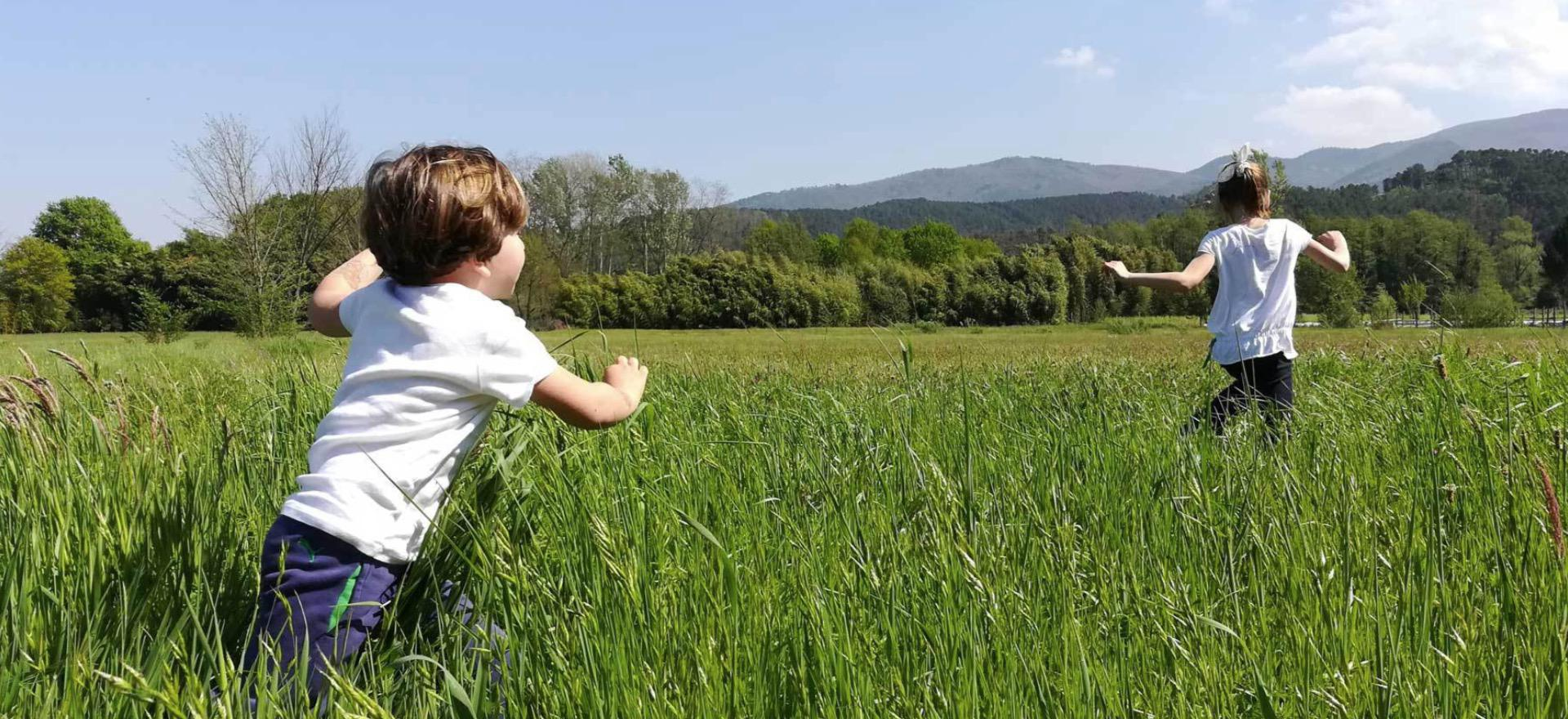 Agriturismo Toscana Agriturismo accogliente vicino a Lucca
