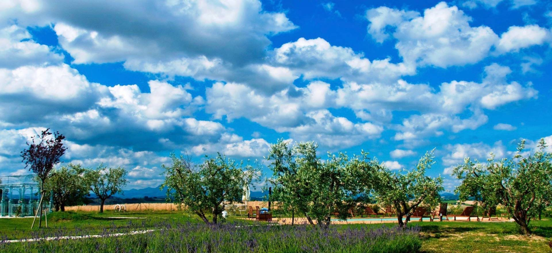 Agriturismo Marche Agriturismo Marche, camere belle e accoglienti