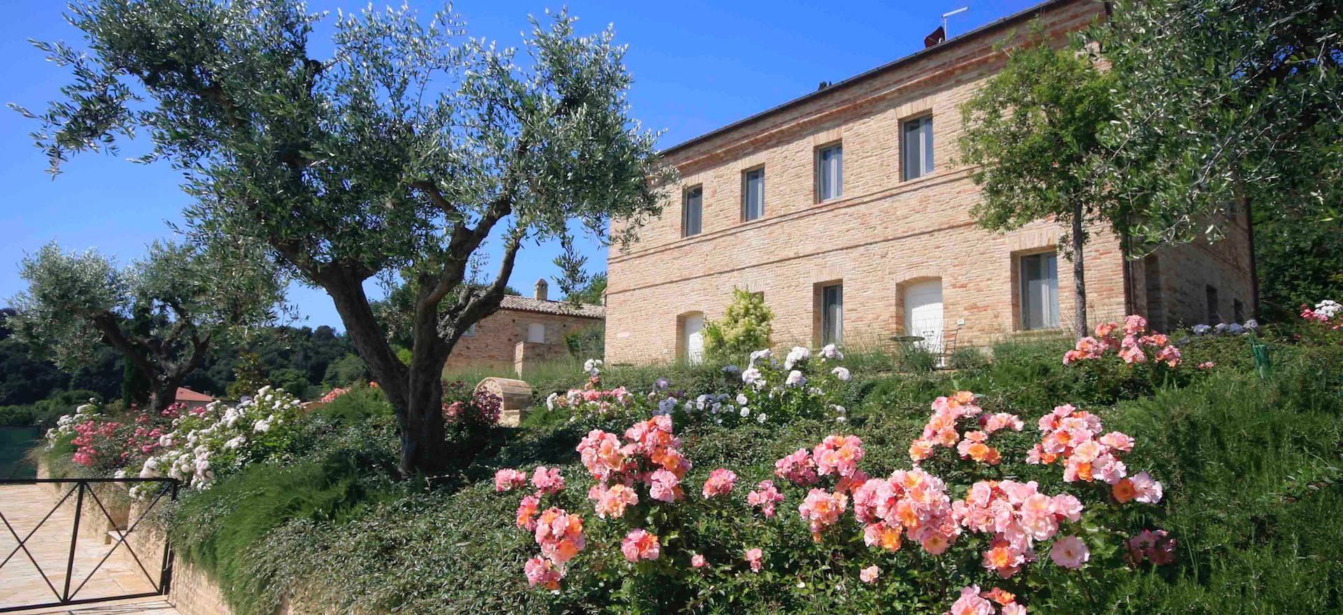 Agriturismo Marche Agriturismo Marche, camere eleganti e vista mare