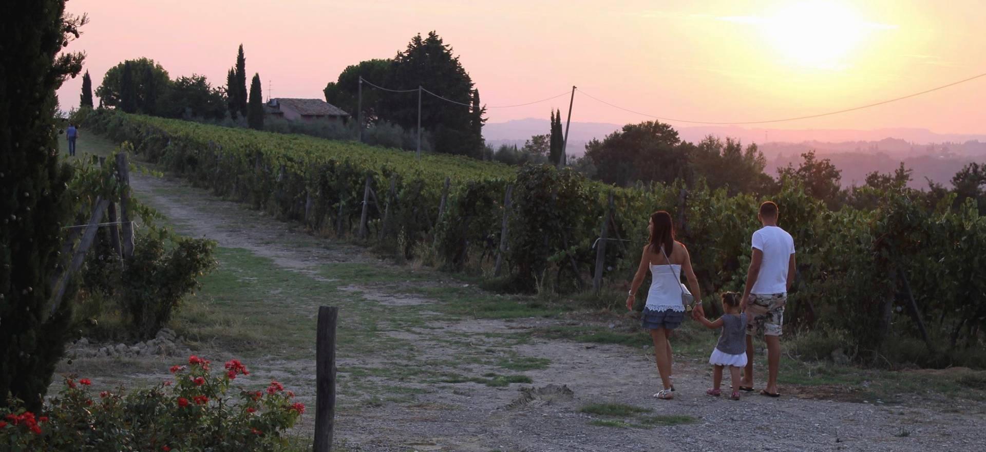 Agriturismo Toscana Agriturismo su una collina nel Chianti