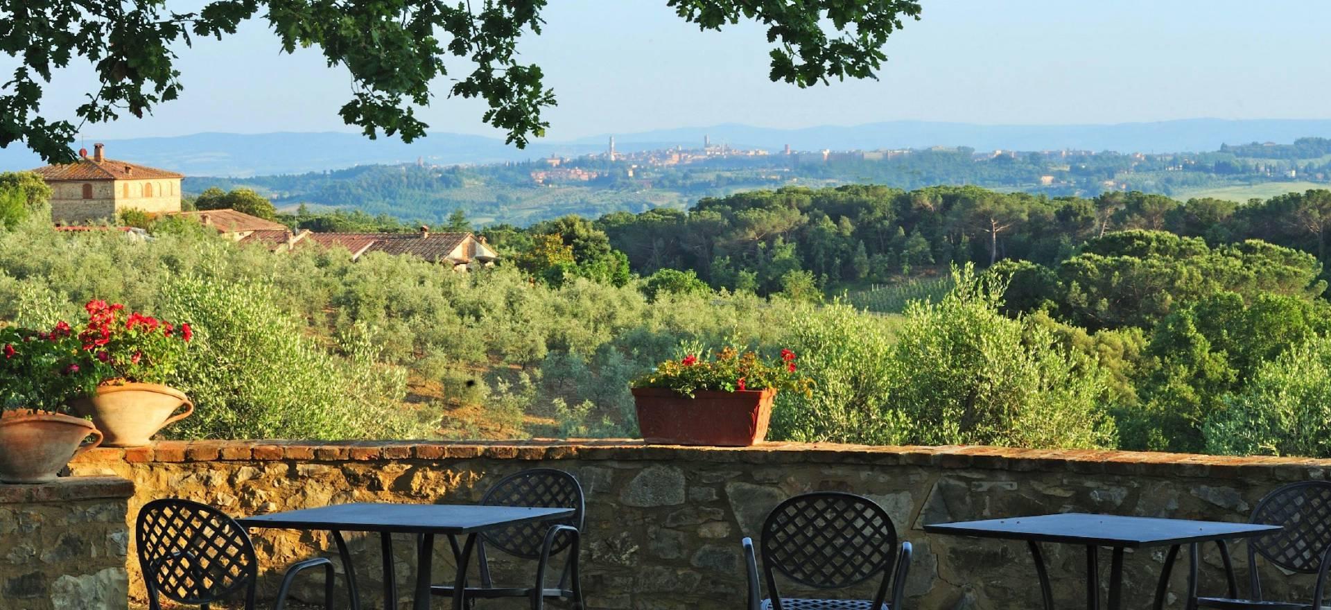 Agriturismo Toscana Agriturismo autentico e cantina nel Chianti, Toscana
