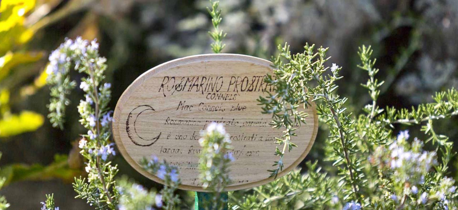Agriturismo Marche Agriturismo romantico nelle Marche con ristorante