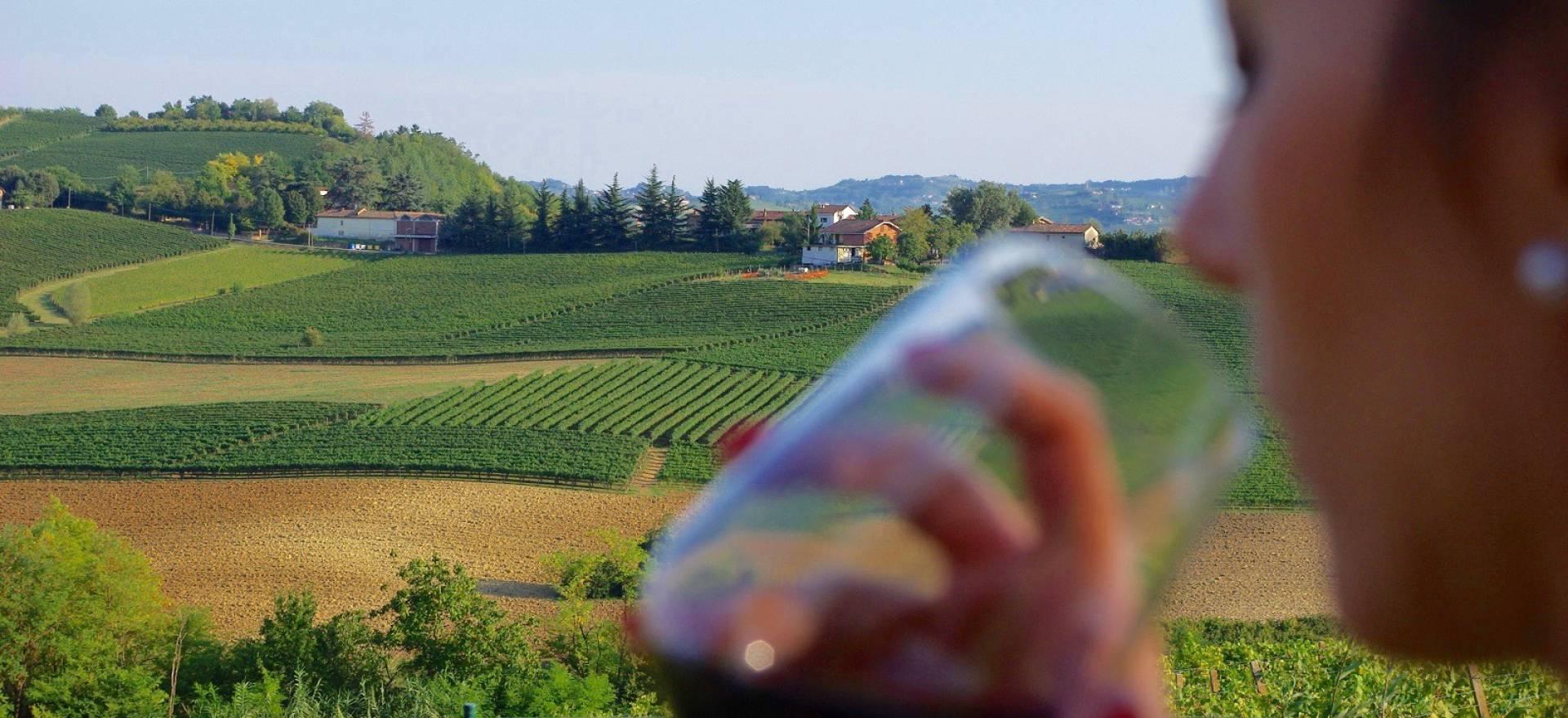 Agriturismo Piemonte Romantico agriturismo sulle colline del Piemonte